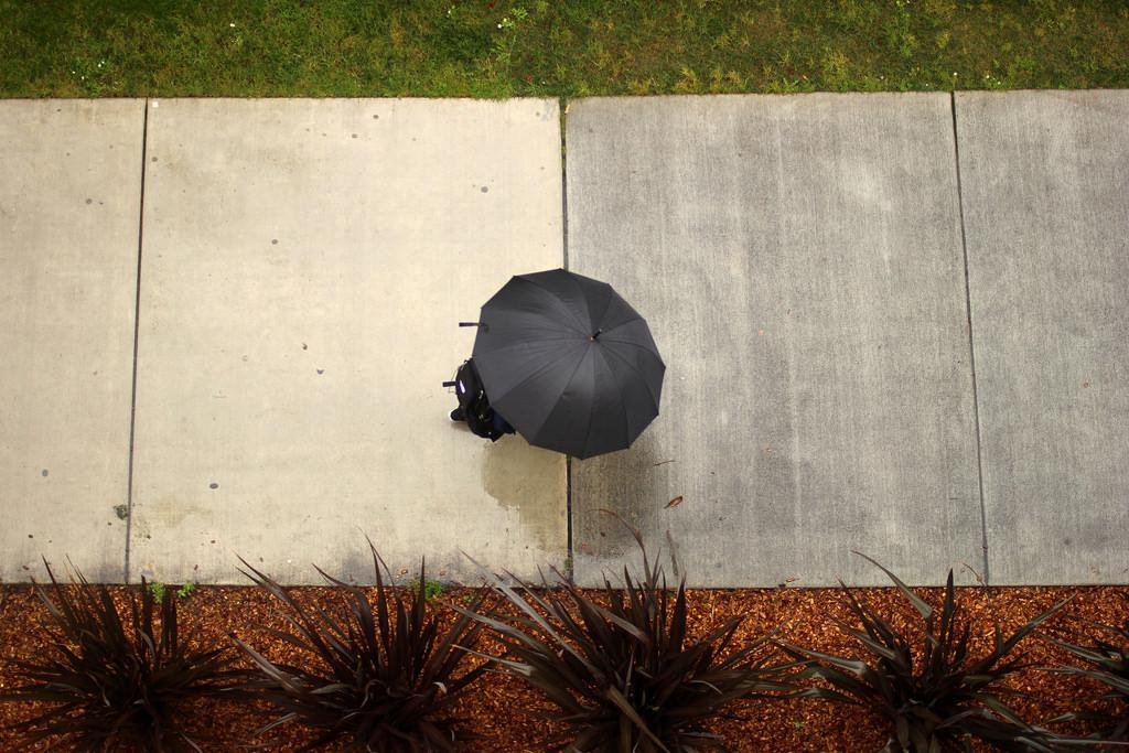 A student hides from the rain under an umbrella near the Humanities Building Wednesday, Feb. 26. Photo by Tony Santos / Xpress