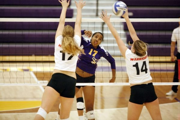 Kaileen Mejia (17) of the SF State Gators spikes the ball through Cal State Stanislaus Warrior blockers Saturday, Oct. 11, 2014. The Gators lost the match 0-3. Martin Bustamante / Xpress.