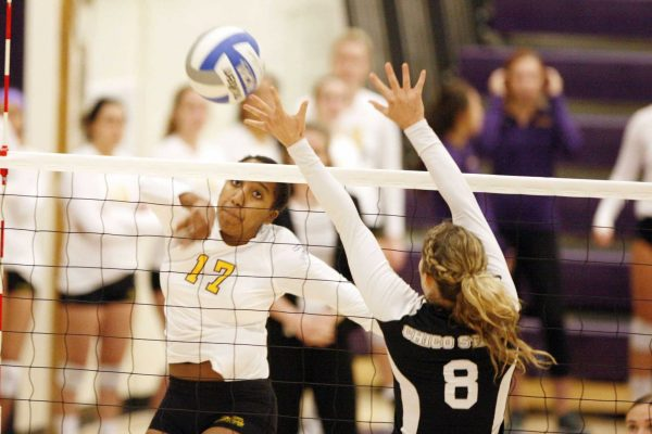 Kaileen Mejia (17) of the SF State Gators spikes the ball back to the Chico State Wild Cats, winning 3-1 Friday Oct. 10. Martin Bustamante / Xpress.