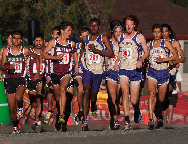 SF State runners earn honors at conference championship