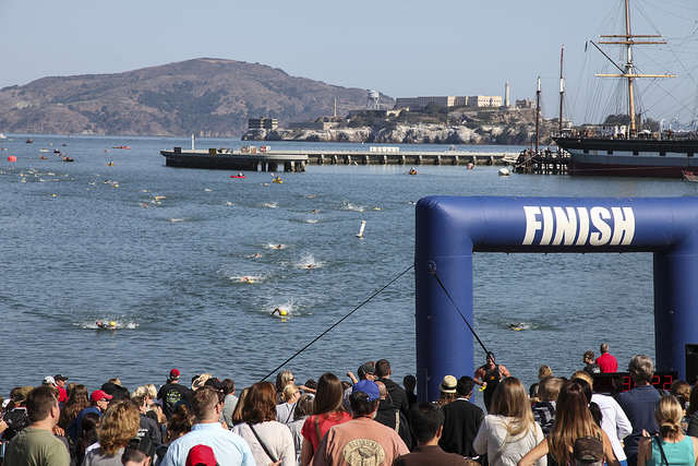 Hundreds of swimmers paddle for the finish line at San Francisco's Aquatic Park during the Alcatraz Invitational Swim Sunday, Sept. 14, 2014.