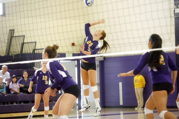 Bria Morgan (20) of the SF State Gators spikes the ball back to the CSU San Dominguez Hills Toros during a match Saturday, Oct. 18, 2014. The Gators won the match 3-0. Martin Bustamante / Xpress.