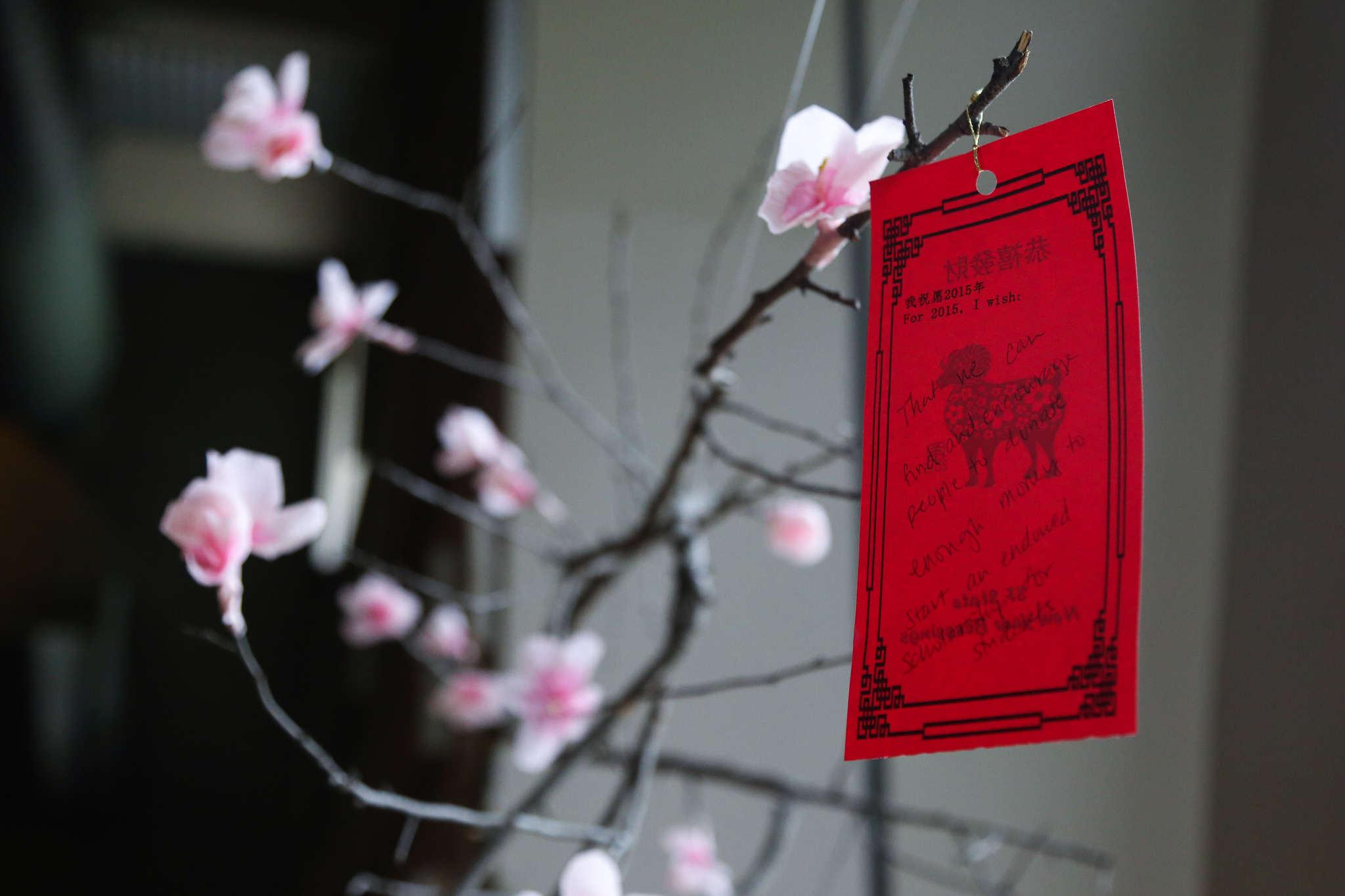 A lone wish dangles from a cherry blossom branch at SF State's Chinese New Year festivities held in Jack Adams Hall Monday, March 9. (Kate Fraser / Xpress)