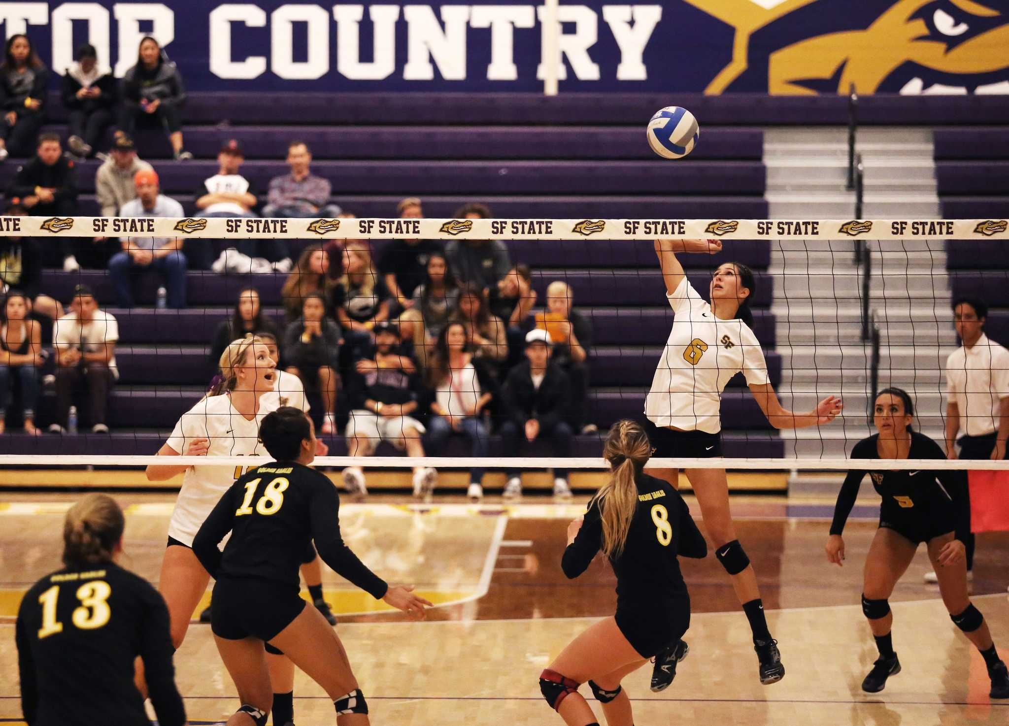 SF State Gators' Jaclyn Clark (6) prepares to strike the ball against the Cal State L.A. Golden Eagles during the second set of the match at the Swamp Friday October 2. SF State won 3-1. (Joel Angel Juárez / Xpress)