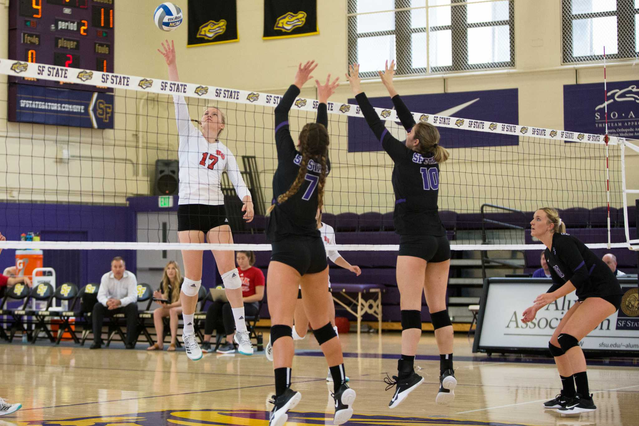 Biola University's Bekah Roth (17) spikes the ball during a game against SF State in the gym on Thursday, September 7, 2017. Biola defeated SF State 3-1. (Travis Wesley/Golden Gate Xpress)