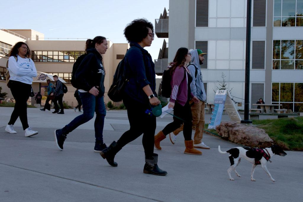 Mia Anderson walks through the campus with her dog Xena at SF State on Thursday, Feb. 15, 2018. This pair has been together for 10 years. (David Rodriguez/Golden Gate Xpress)
