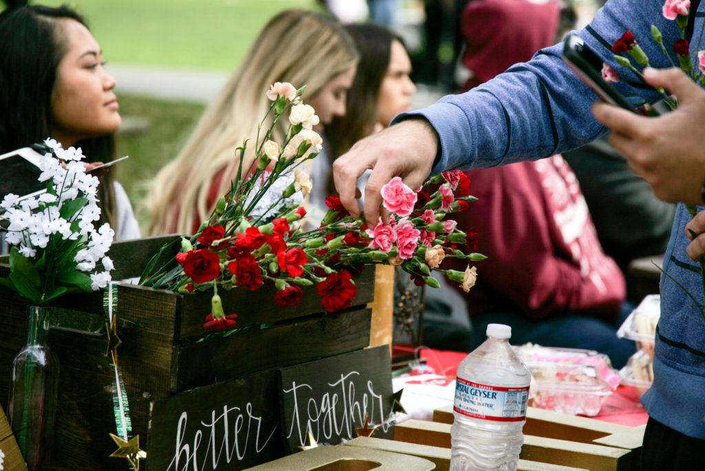 Alpha Phi Sorority sells carnations to support Women's Heart Health organization at SFSU on Wednesday, February 14. (Photos: Adelyna Tirado)