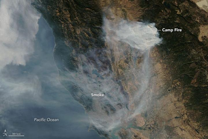 A NASA satellite photo of the Camp Fire, taken on Nov. 12, shows the toxic smoke spreading across the Bay Area. (Lauren Dauphin/NASA Earth Observatory)