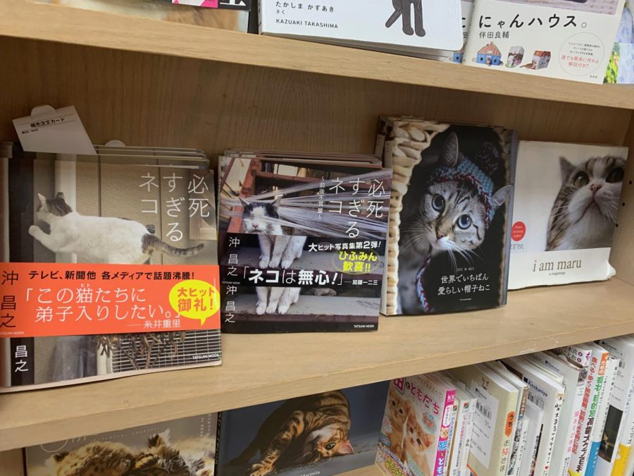 Various cat books written in Japanese are shown on a shelf  in Japantown's Kinokuniya bookstore. (Emily Cardenas / Golden Gate Xpress)