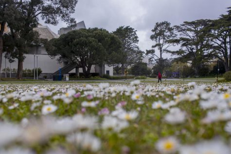 Photo of the day: SF State turns into a ghost town