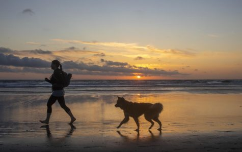 A person runs on the beach with their dog during sunset at Ocean Beach in San Francisco. (Emily Curiel / Golden Gate Xpress)