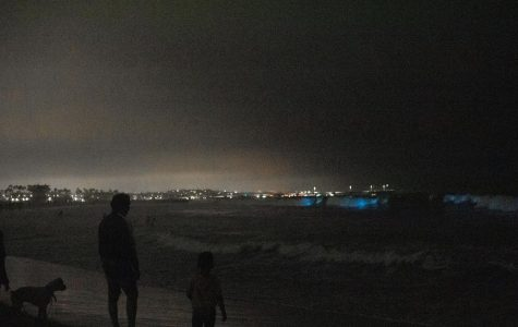 People flock to Venice Beach to see the bioluminescent waves hit the shore and disregard social distancing guidelines. Photographed in Venice Beach, California.
