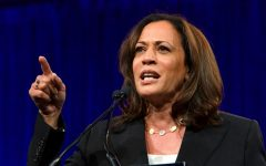 """As a member of the intelligence committee and the judiciary committee, she's been [Kamala Harris] in the middle of the most critical national security challenges our country faces,"" Biden said at his first joint campaign event with Harris.(Sheila Fitzgerald / Shutterstock.com)"