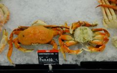 Dungeness crabs on display at Bel Air Grocery in Roseville, CA. A limited number of Bay Area restaurants and markets are selling the delicacy at this time. (Ellie Doyen / Golden Gate Xpress)