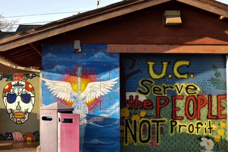 """Murals represent the legacies of Berkeley's historical People's Park that has been a staple to the city since its establishment in 1969. The recent park protests against student housing developments follow suit with """"Bloody Thursday"""" on May 15 1969 and the Volleyball Court protests in 1991. (Leila Figueroa / Golden Gate Xpress)"""